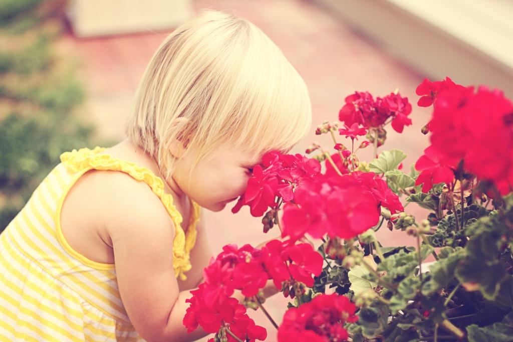 zoe flowers